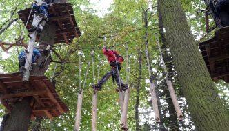 Diözesan-Wö-Tag: Die Wölflinge rasten durch den Wald!